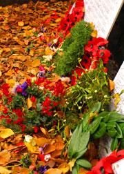 floraltributes2.jpg